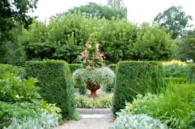 gardenpic 6