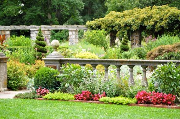 gardenpic 9